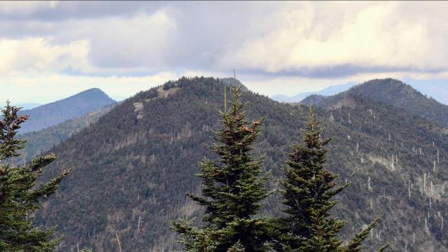EARNHARDT-1 Mount Mitchell
