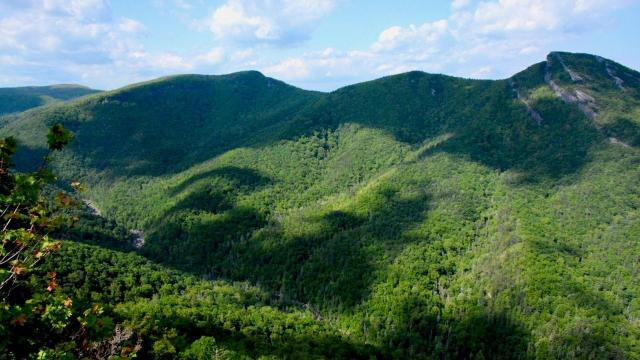 EARNHARDT-1 Linville Gorge