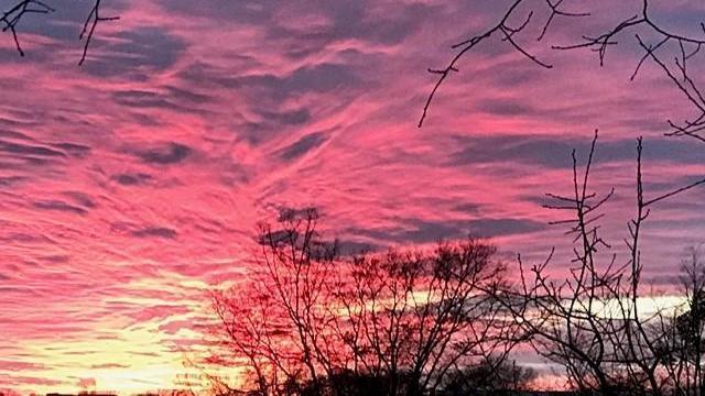 EARNHARDT-13 Johnston County sunset