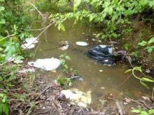 Focal Point: Trash Talk