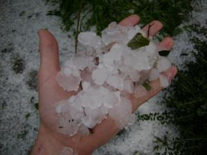 Hail in Newton Grove (Submitted by Ariel Thornton)