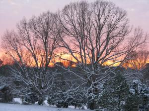 Sunset in the snow from my house in Raleigh.