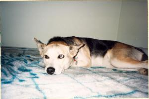 Your presence in our lives meant more than we ever knew.