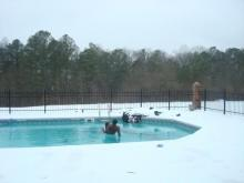 Fuquay Polar bear clubs pics 1-5