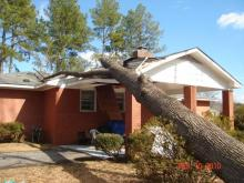 Strong winds caused trouble for trees and powerlines on Feb. 10, 2010.