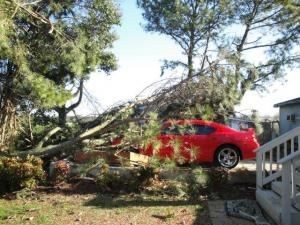 "Here are half of the pictures of my car/carport after ""tornado-like winds"" hit around 6:15 pm on Sunday, March 6."