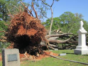 pics from Oakwood Cemetery after the 4/16/11 tornado