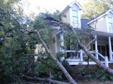 Tree fell on house during Irene.