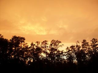 Pictures taken after the brief thunderstorm in Eastover, NC.