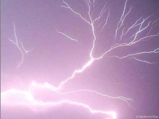 Beautiful shot taken in Youngsville, NC.  Though Dangerous