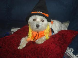 His Halloween Costume