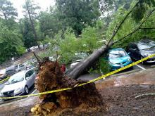 Crews to assess damage in Chapel Hill Tuesday