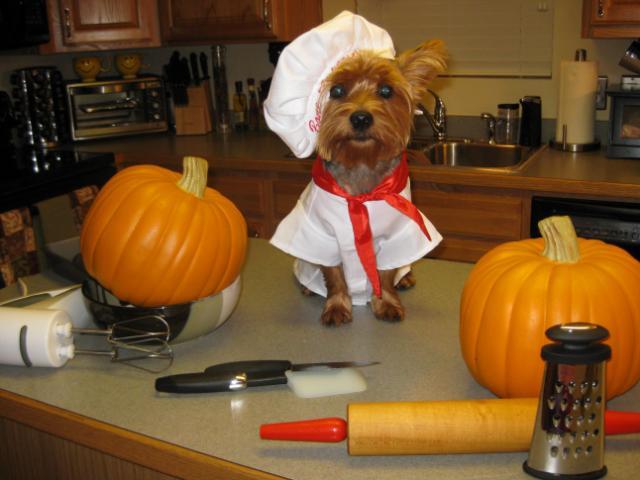 Chef Winslow
