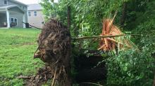 IMAGES: Your photos: Storm Damage