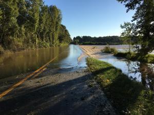 Swift Creek floodwaters, Smithfield Sunday 8:30 am