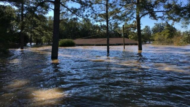 Pictures of Flooding South of Goldsboro near HWY 13