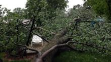 IMAGES: Your photos: Strong storms snap trees, damage property early Friday morning