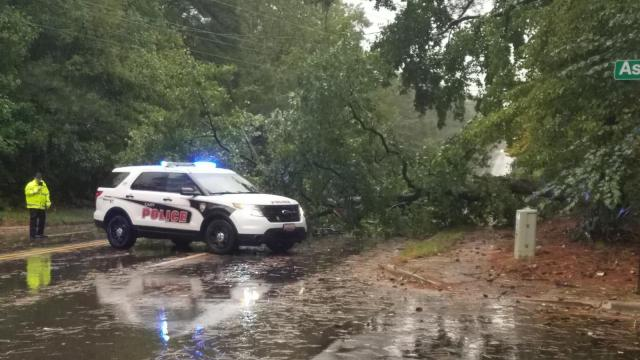 Tree down in Cary on N. Harrison Ave blocking 3 lanes