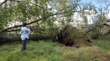 IMAGES: Images: Good Friday storm damage