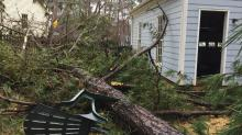 IMAGES: Wind gusts of 50 mph cause more downed trees, power outages