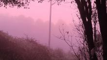 IMAGES: WRAL Weather Watchers: Purple fog