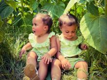 Your photos: Sunflower season