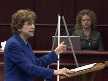 Defense attorney Diane Savage