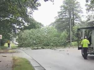 A fallen tree closed Wade Avenue in both directions between Dixie Trail and Dogwood Lane Tuesday afternoon.