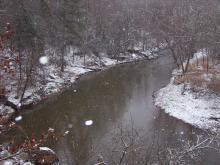 Durham's Eno River