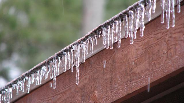 Photo by: Paula..Vass, Moore County. My homes icy armour!