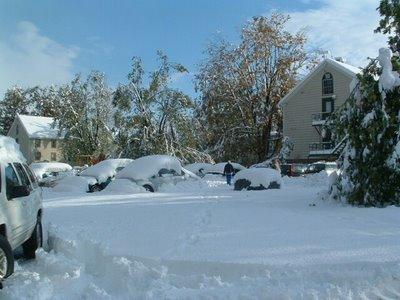 buf_snow3-706496.jpg