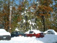 buf_snow1-717908.jpg