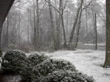 snow1-794747.jpg