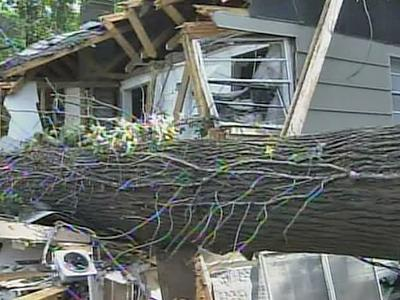 A large tree sliced a Cumberland County home in half on July 22, 2008.