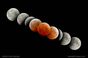 Lunar eclipse multiple image series, from the Mr Eclipse web site referenced in the answer.