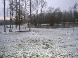 Snow covers a field in Mebane on Friday, Nov. 21, 2008. (Viewer submitted photo)