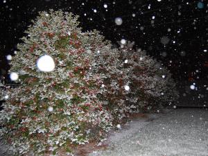Snow falls early Tuesday outside the WRAL studios in Raleigh.