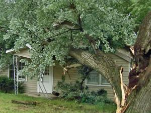 A huge, old tree split in several places and landed on a vacant home on Method Road in Raleigh, collapsing part of the front porch on Saturday, May 9, 2009.