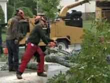 Downed trees strike houses in Holly Springs