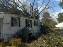 Strong winds caused a tree to fall on a house on Harding Street in Raleigh on Feb. 10, 2010.