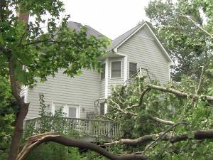 High winds blew trees down at 4900 American Drive in Durham on Friday, May 29, 2010.
