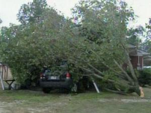 A tree fell on a carport along Bethel Baptist Church Road in Spring Lake on July 8, 2010.