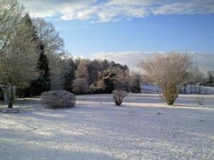 Warren County saw snow on Jan. 8, 2011.