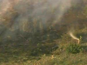 Firefighters battle smoke and flames in a wooded area in Sampson County.