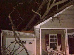 Strong winds also toppled a tree onto a house on Harris Point Way in Wake Forest Wednesday night.