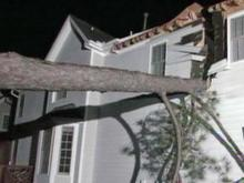 Tree splits Durham home