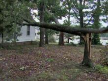 Storms bring damage to Harnett, Lee counties