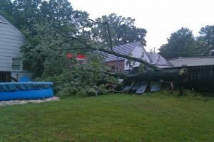Storm damage from 6/28/11 on Old Chapel Hill Road (Photo courtesy of Melissa Dover)