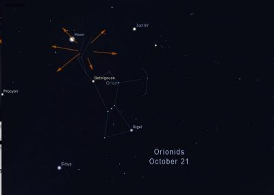 locating the Orionid meteor shower (Credit: Stellarium/Rice)