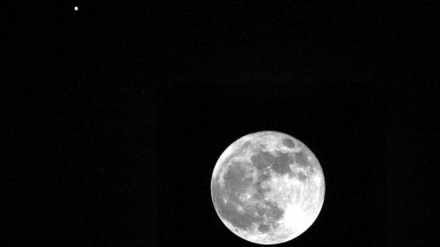 Jupiter shines brightly above Wednesday's full moon. (Credit: Tony Rice)